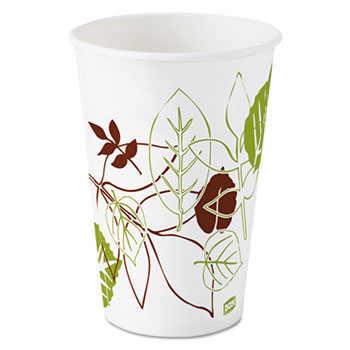 Dixie Pathways Polycoated Paper Cold Cup - 16 oz