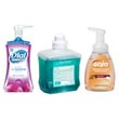 Foaming Hand Soaps, Foam Lotion Handwash & Antibacterial Foam Soaps - Janitorial Skin Care & Personal Hygiene Products