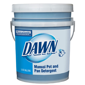 Original Dawn Dishwashing Liquid - 5-Gallon Pail