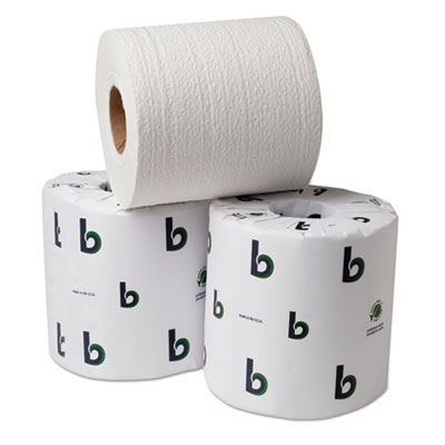 Green Toilet Tissue Roll -2-Ply - 500 Sheets