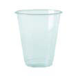 Clear Plastic PETE Cups, 10 oz., 45/Bag BWKYP-10C