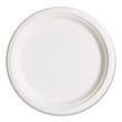 "Compostable Sugarcane Dinnerware, 10"" Plate, Natural White ECPEP-P005"