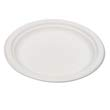 "Compostable Sugarcane Dinnerware, 6"" Plate, Natural White ECPEP-P016"