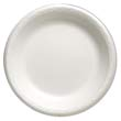"Celebrity Foam Dinnerware, 10.25"" Plate, White GNP81000"