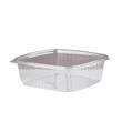 Clear Hinged Deli Container, Plastic, 48 oz, 8 x 8-1/2 x 2-1/2, 100/Bag GNPAD48
