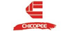 Chicopee Chix & Quix Pretreated Foodservice Towels & Wipes